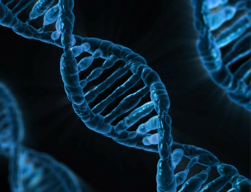 Why is understanding DNA powerful to research?